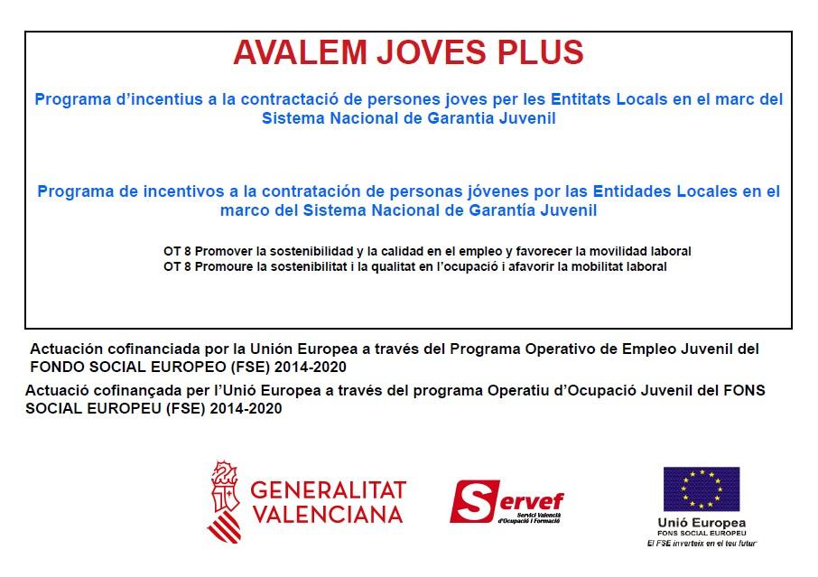 Programa d'incentius a la contractació de persones joves per les Entitats Locals en el marc del Sistema Nacional de Garantia Juvenil